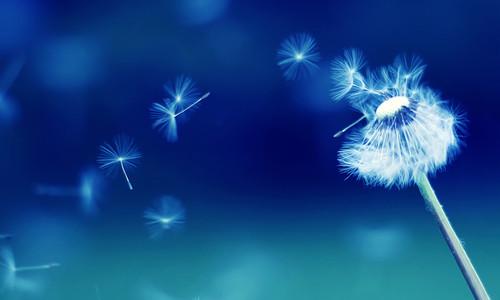 Пять мифов о холотропном дыхании. Разрушаем стереотипы.